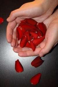 Sanfte Aromapflege für ErgotherapeutInnen