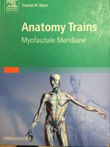 Buch: Anatomy Trains, Myofasziale Meridiane