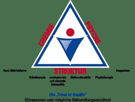 Funktionelle Myodiagnostik (FMD)