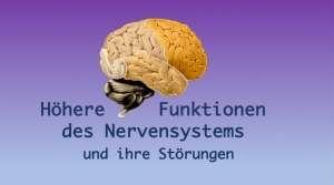 Höhere Funktionen des Nervensystems und ihre Störungen