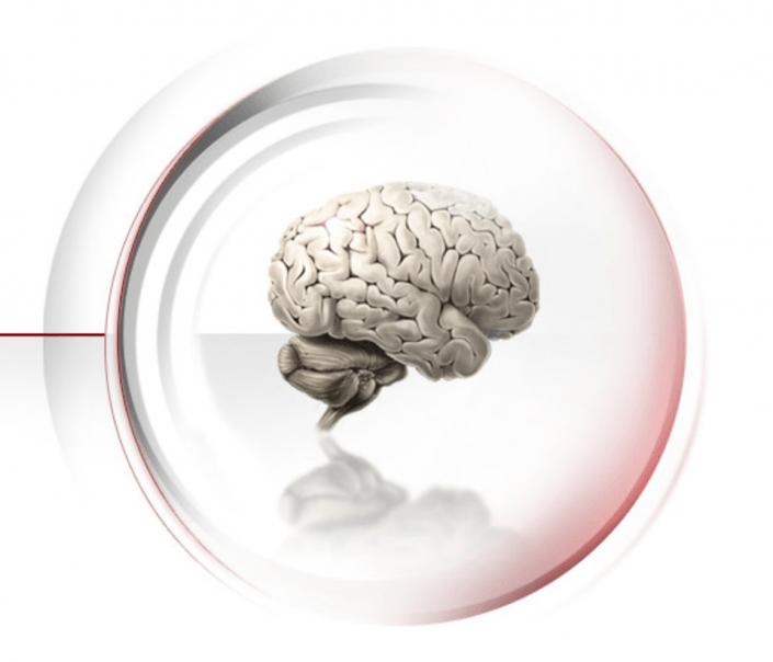 Funktionelle Neuroanatomie mit Neslon Annunciato